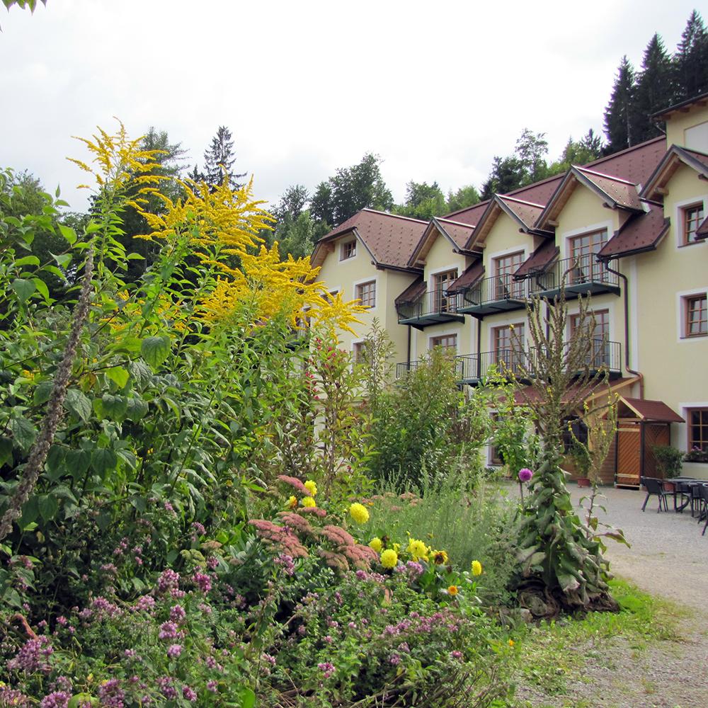 Haus Talblick: QUA Terrasse Beim Talblick Blumen